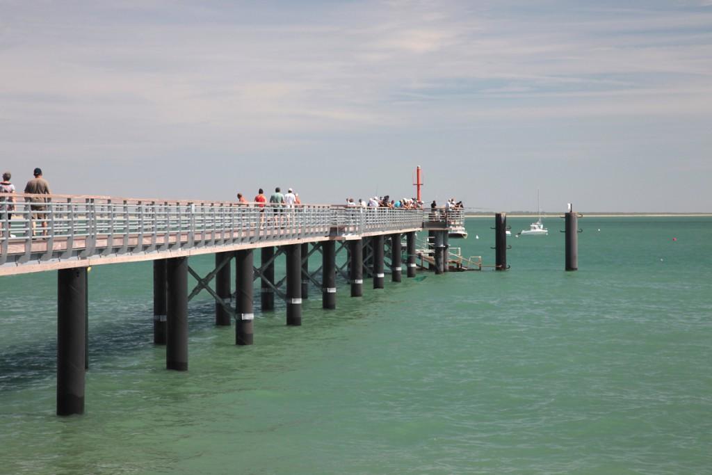 Ville Ideale La Tranche Sur Mer