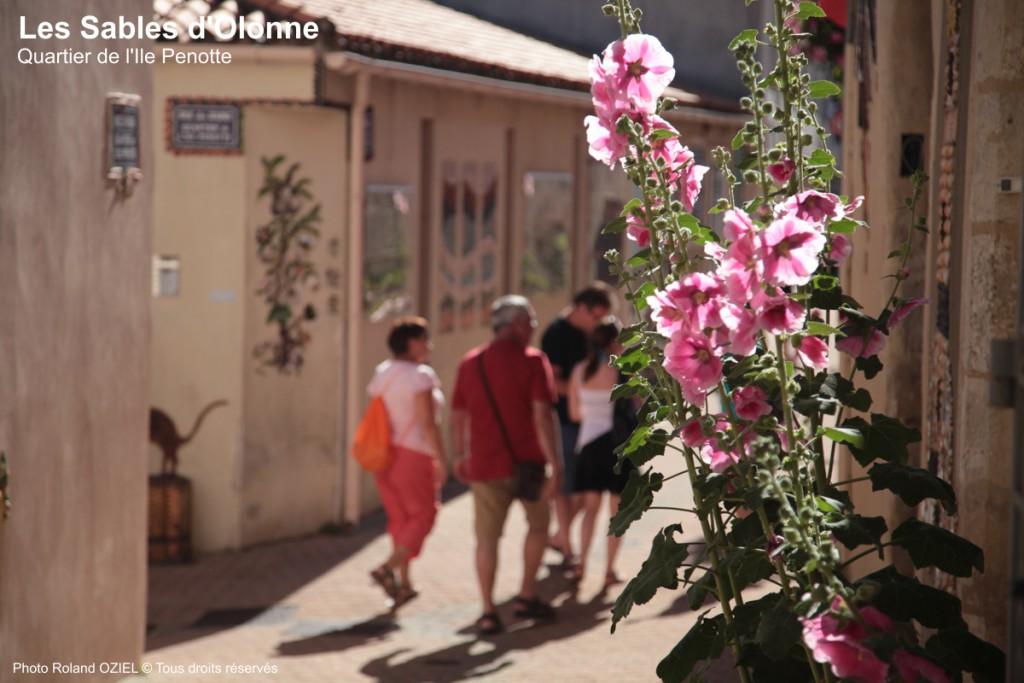 Quartier de l'Ile Penotte au centre de la ville des sables d'olonne à visiter pendant votre séjour au camping